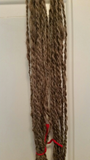 Plied yarn from the spinning on Day 6. It's the best so far.